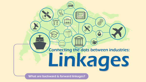 Connecting the Dots Between Industries: Linkages